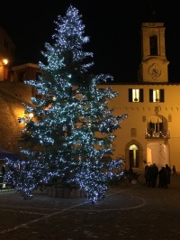 Dear Rome - Our Tree Is Better Than Yours!