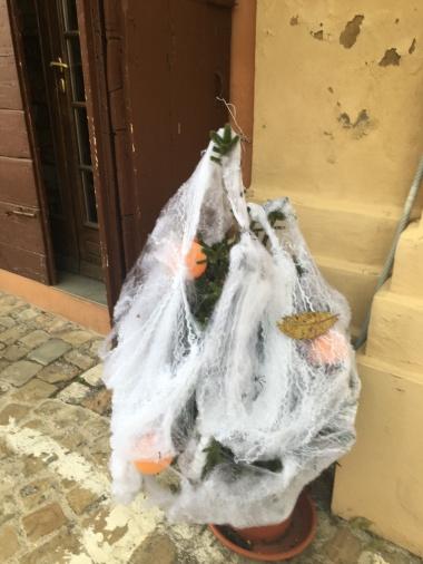 Fake Spooky Plant